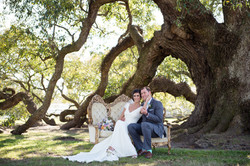 First Look Under the Oaks