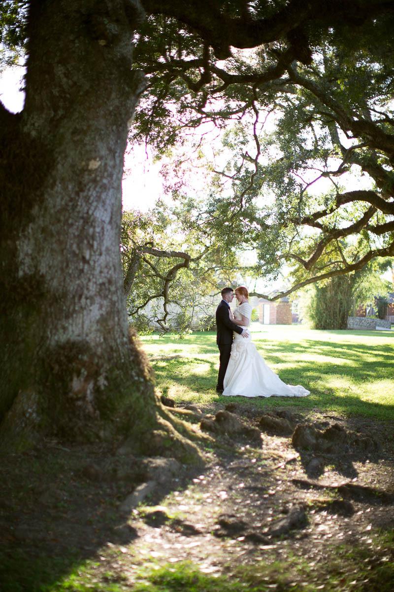 Under the oaks at Stella Plantation