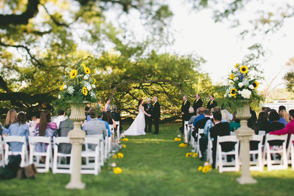 Ceremony at the Lazy Tree