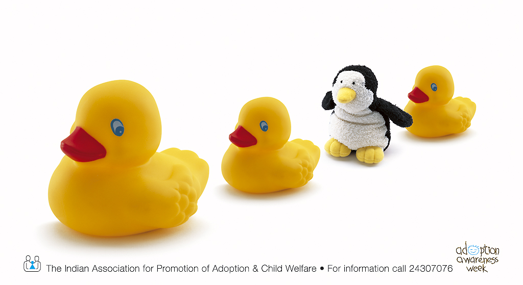 Adoption 1.jpg