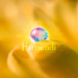 Um-Orvalho-Boreal_Cover_v2_correto.png