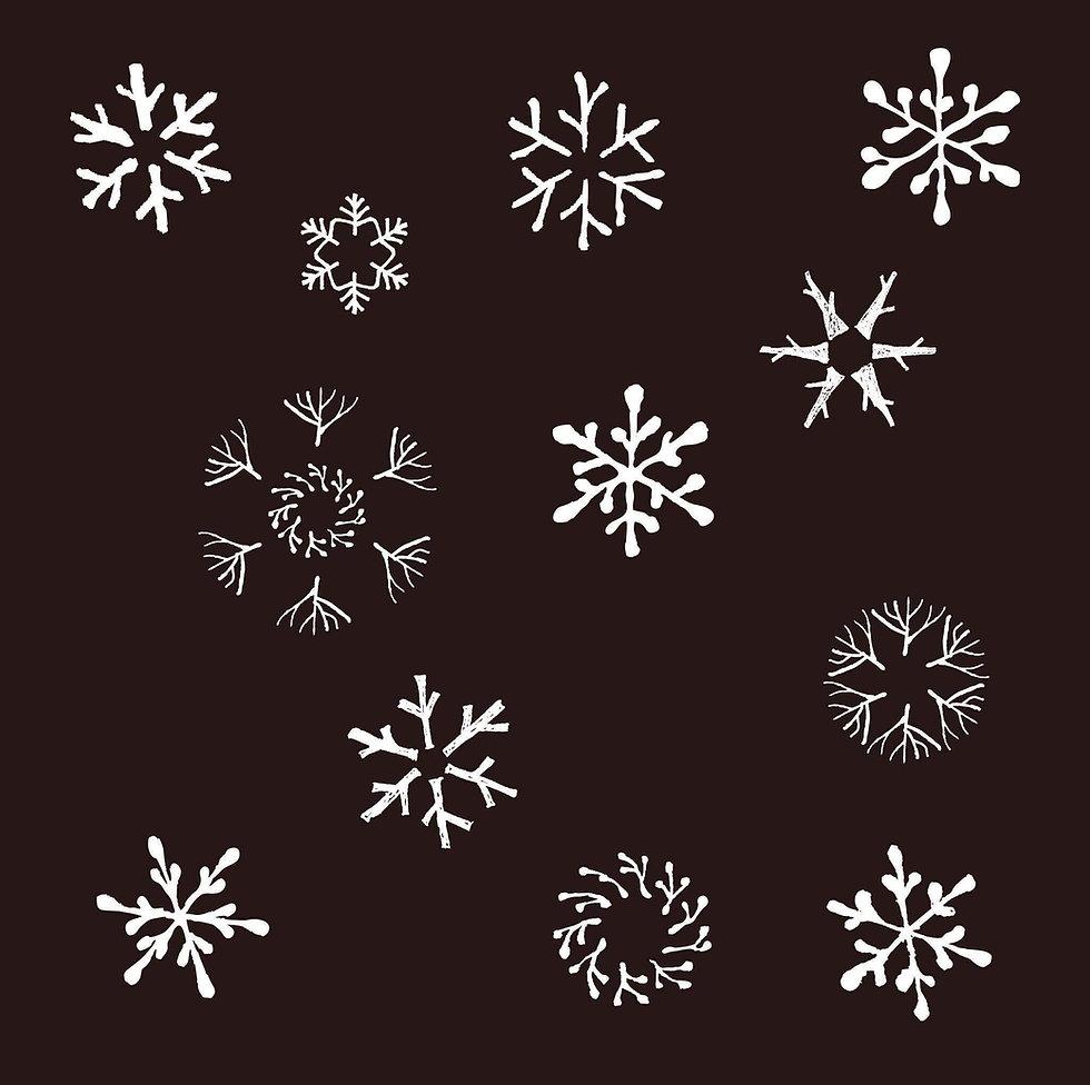 karet snowflake.JPG