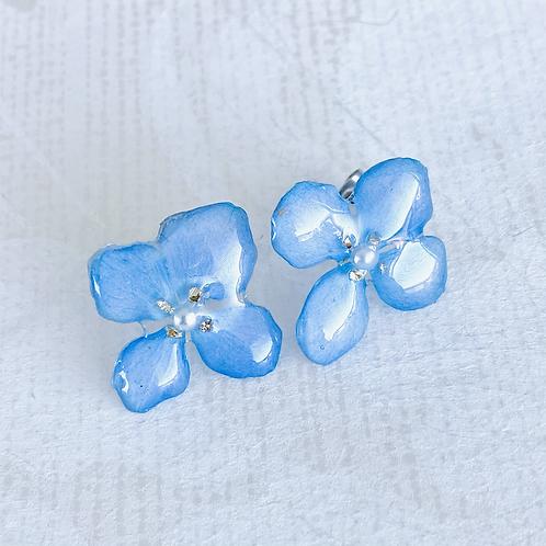 Hydrangea Studs Blue