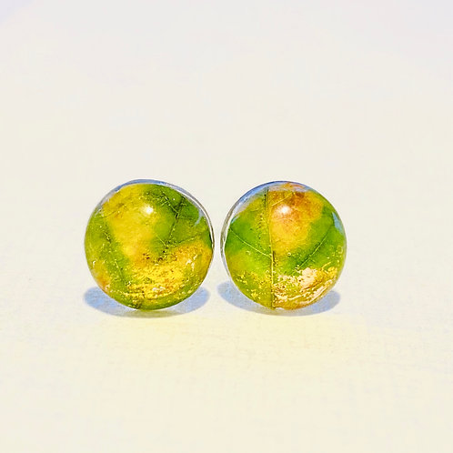 Maple leaf studs / Yellow
