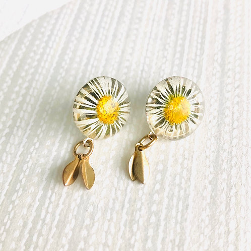 Daisy Studs with leaves