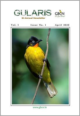 Gularis - GBCN Newsletter - Vol I -  Iss