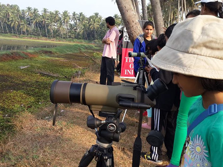 Bird watching session for kids - February 2016