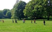 Sport und Bewegung im Park oder der Turnhalle
