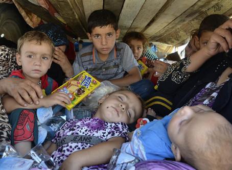 Правительство РФ решило узаконить торговлю детьми
