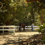 Malibu-Equestrian-Tennis-6-150x150