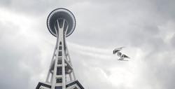SEATTLE - Tie Needle