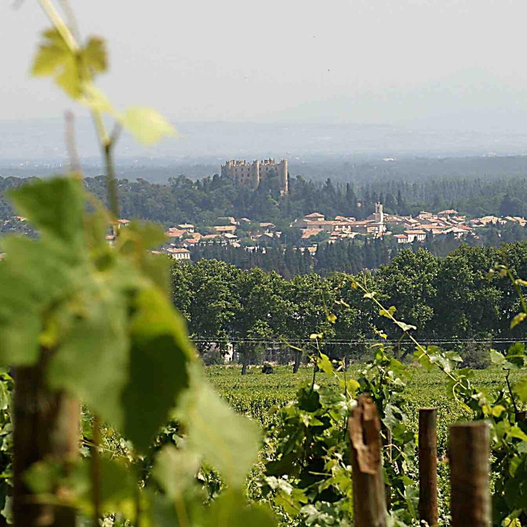 Montfaucon vineyard & château.jpg