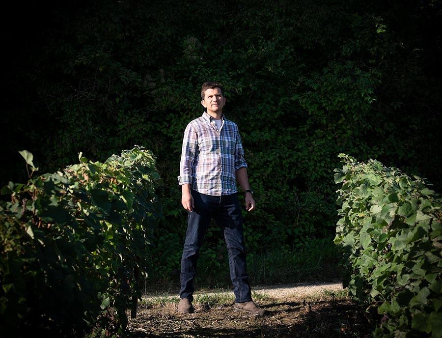 Pierre in the vineyard