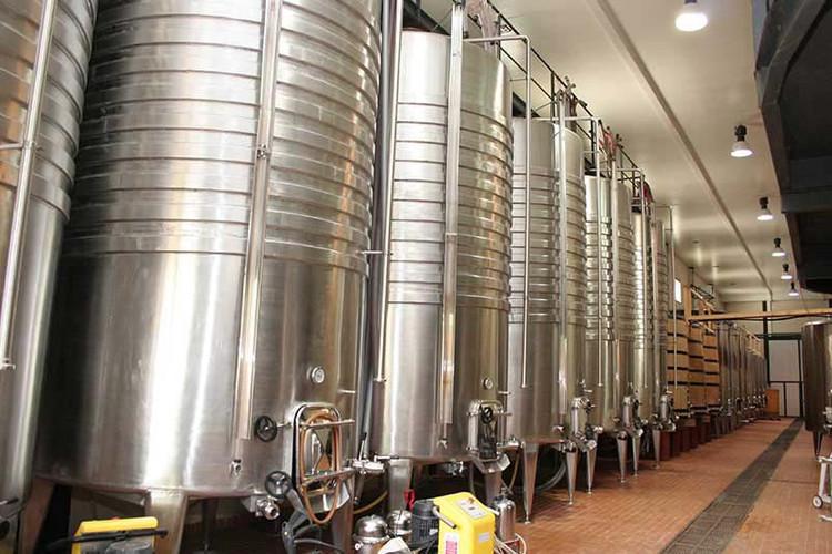 Vineyard and Terroir (11).jpg