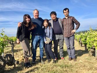 IIDA sales Team visits the Rhone & Languedoc