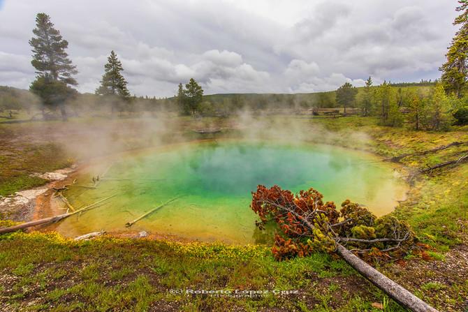 Yellowstone N.P.: Al menos una vez en la vida.