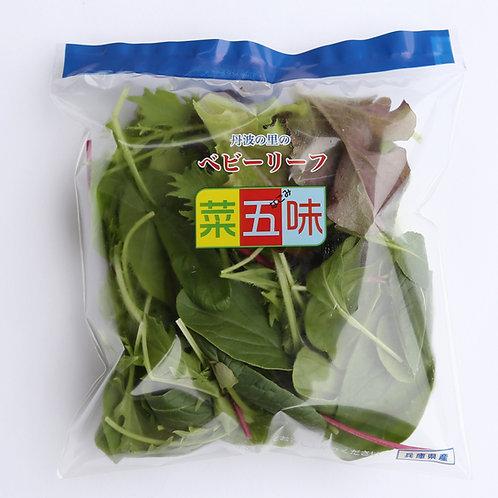 丹波の里のベビーリーフ菜五味 青ライン ベビーリーフミックス 約25g×10袋