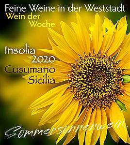 Insolia-2020_29_21_m_edited.jpg