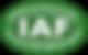 GRIT_logo-IAF-verde 2.png