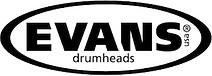 drum heads hamilton