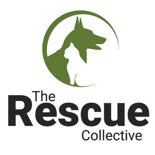 The Rescue Collective