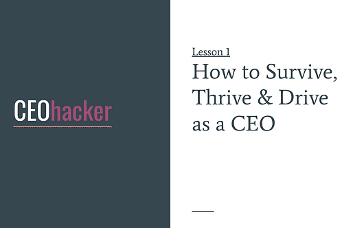 CEOhacker - Lesson 1 - Surviving and Thriving as a CEO