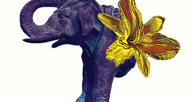The Lilyphant: A Fable