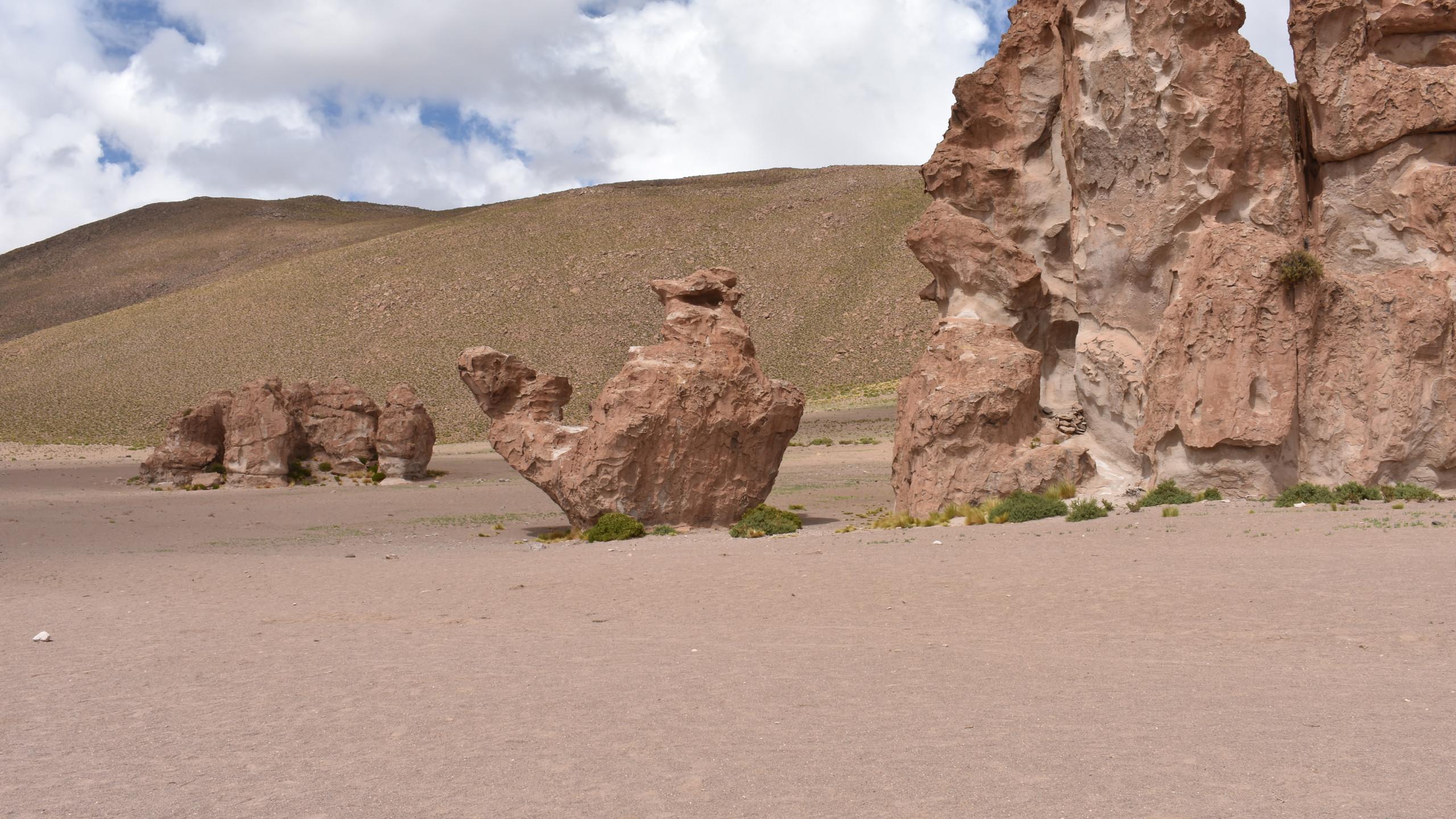 In der Wüstenlandschaft waren überall solche verrückten Felskonstruktionen