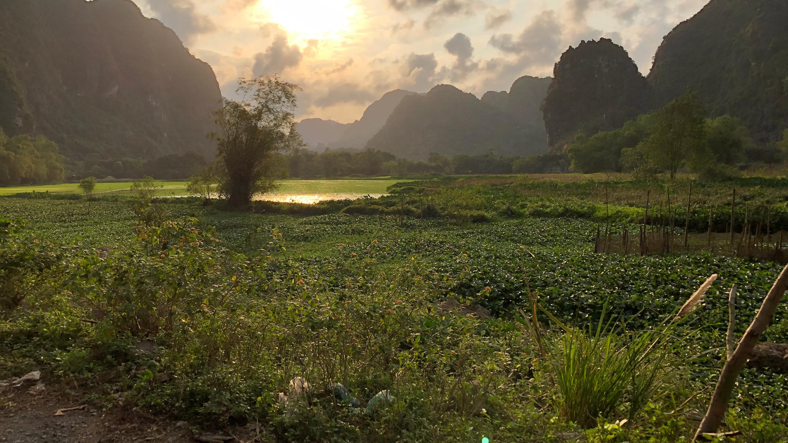 Sonnenuntergang in der Provinz Tam Coc