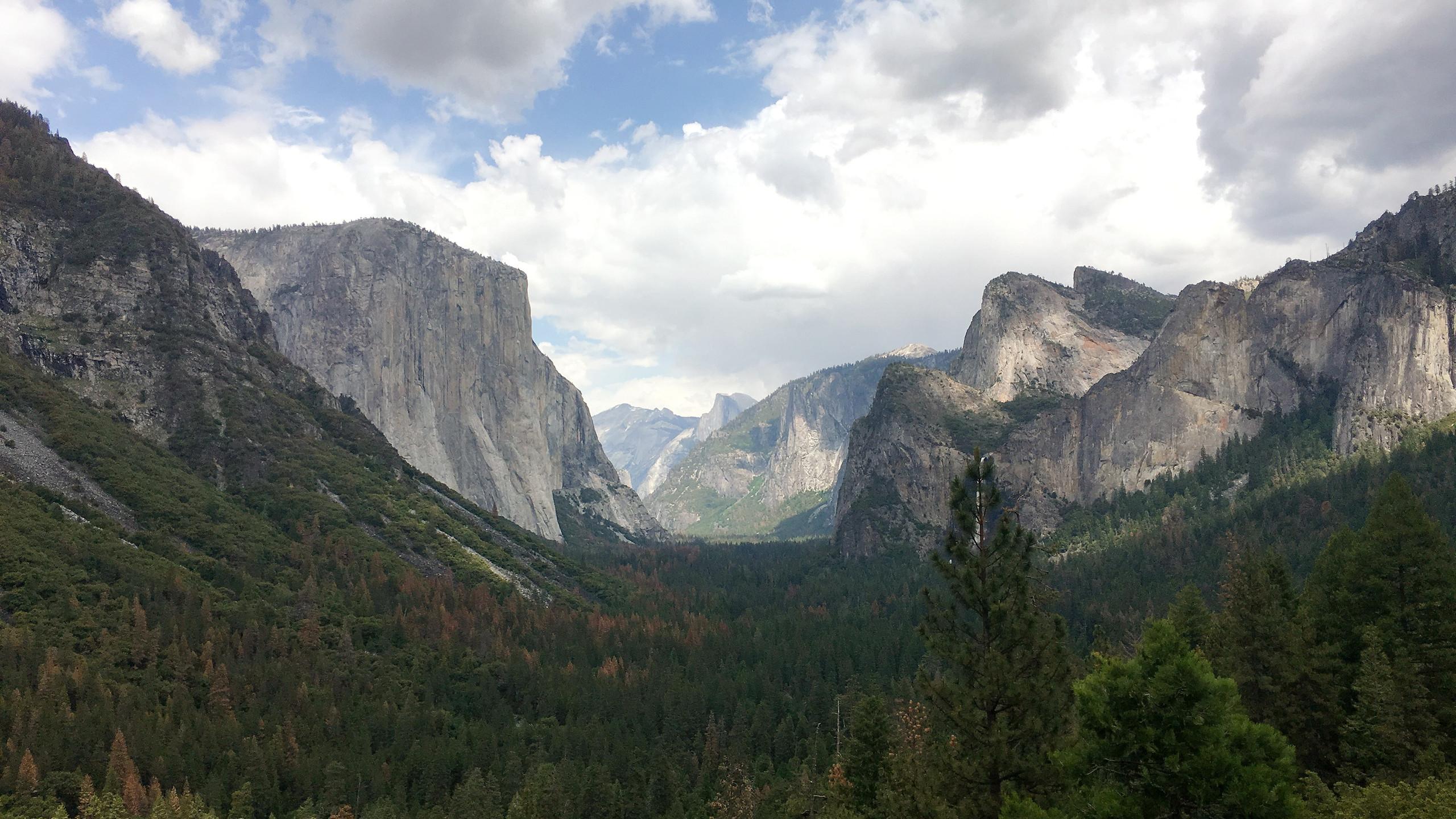 Yosemite Nationalpark - umgeben von Bergen und tiefen Wäldern