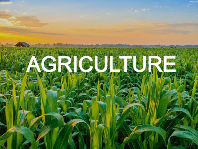AWARENESS AGRICULTURE
