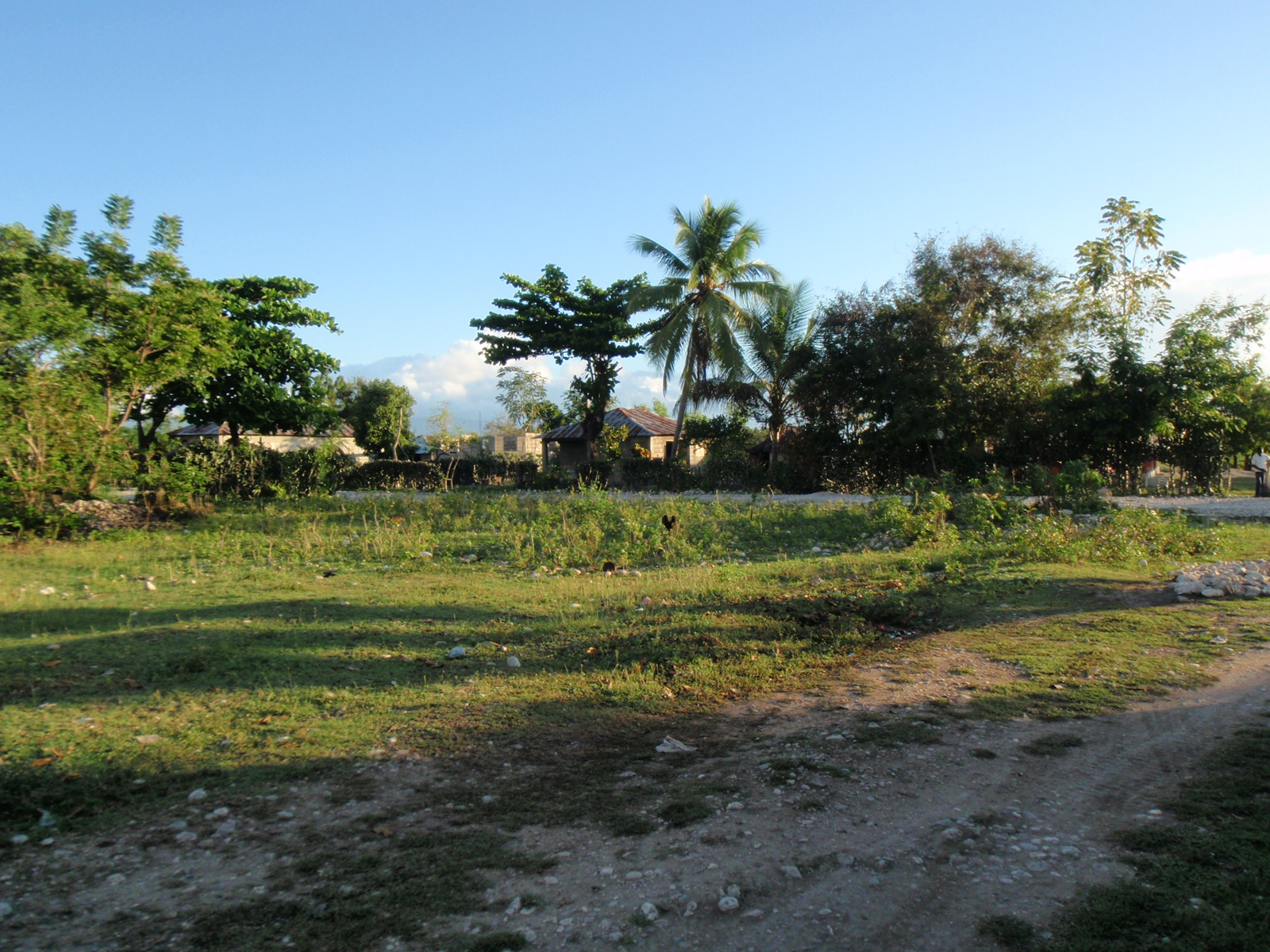 Our Land! :)