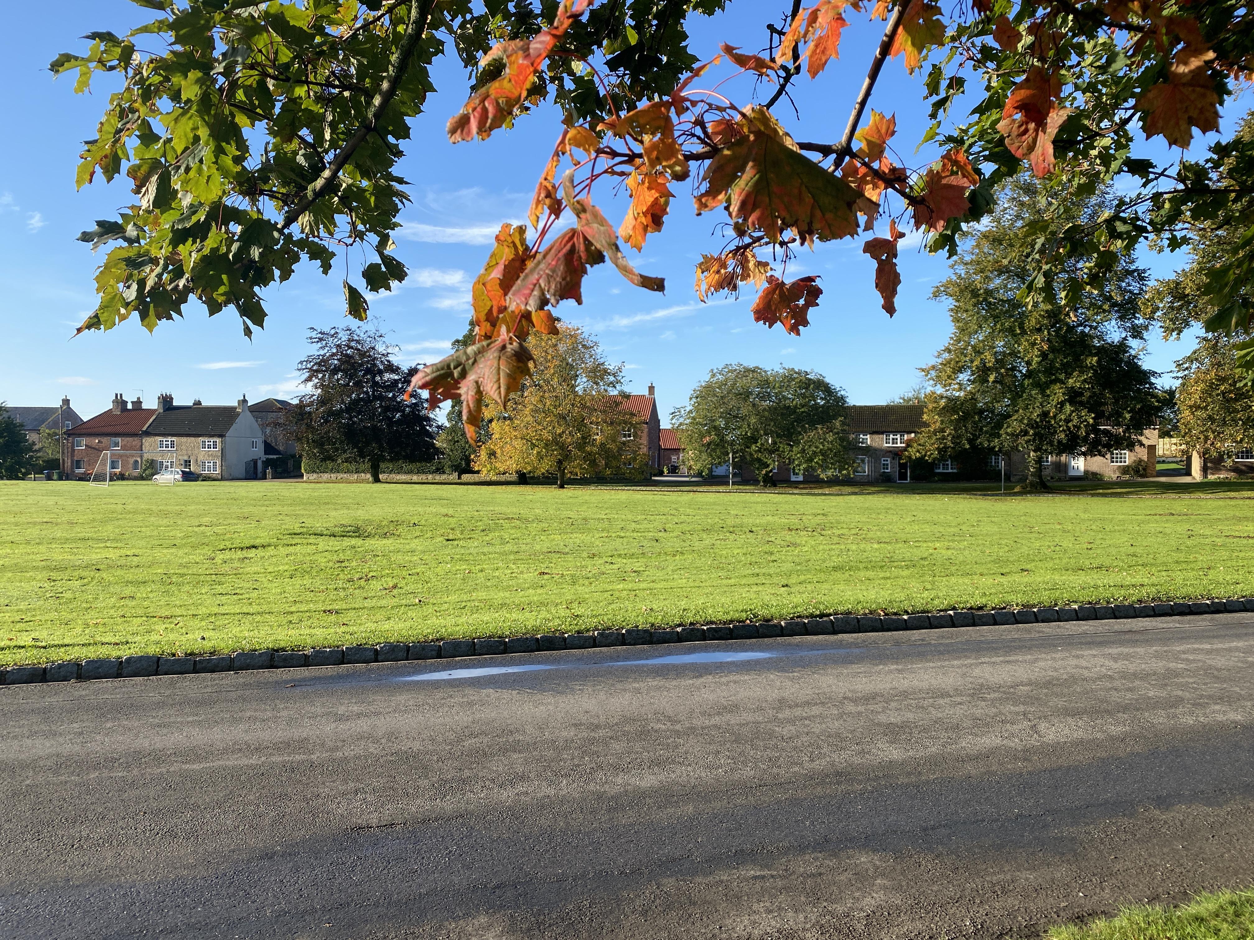 Autumn on the green