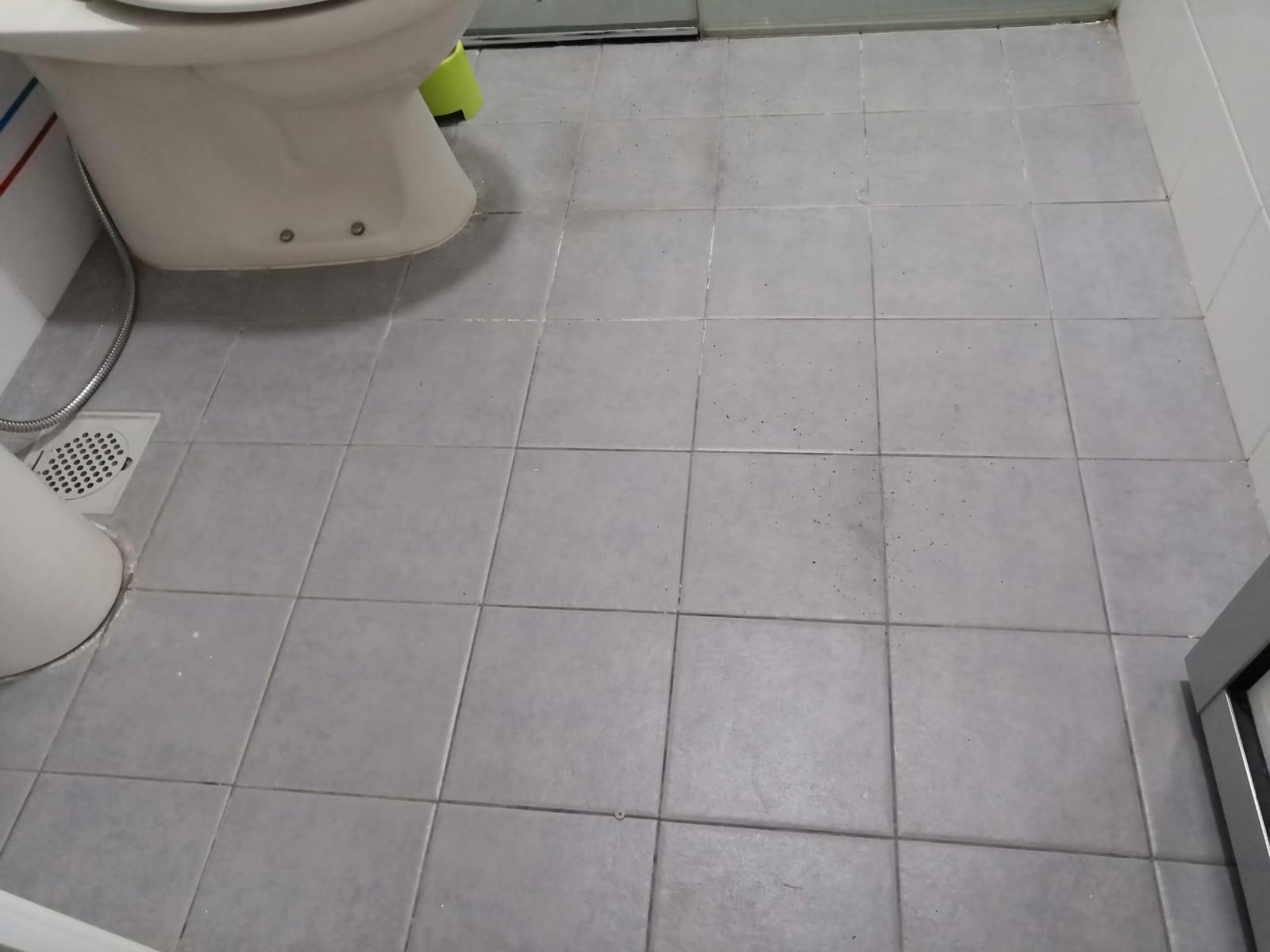 toilet bto
