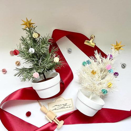 Potted Christmas Tree DIY Kit