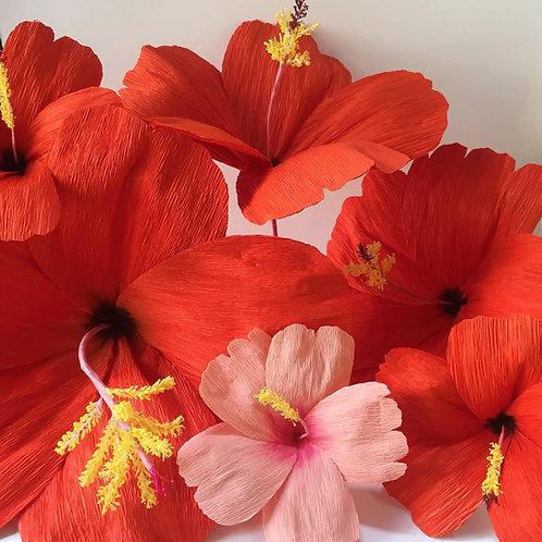 Huge Crepe Paper Hibiscus