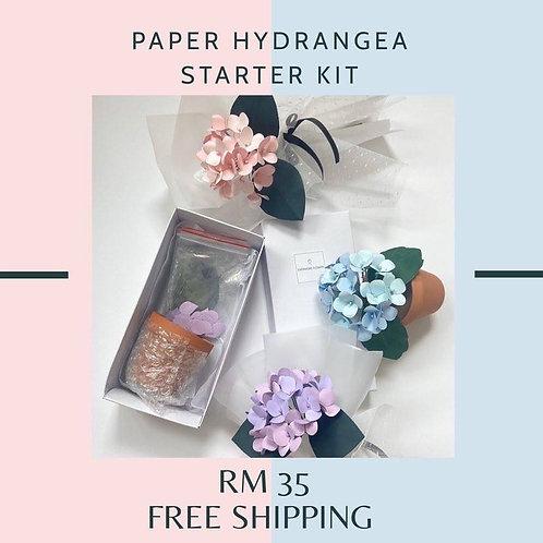 Potted/ Bouquet Hydrangea DIY Kit