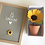 Thumbnail: Potted Sunflower