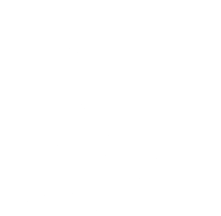 That Cycling Chick's logo