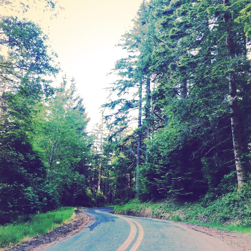Forgotten road.