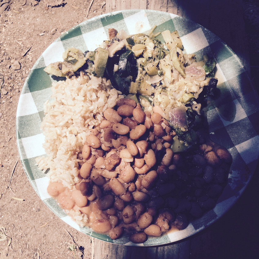 Free lunch by Food Not Bombs