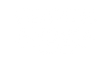 ANDVSA white logo.png
