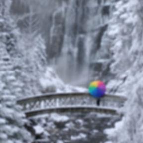 Parapluie A-D (21)_edited.jpg
