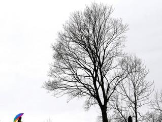 Irisation s'expose à Chamrousse cet hiver