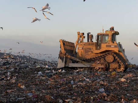 Waste to Energy: A case Study