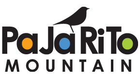 Pajarito Mountain is hosting Yoga and Brunch on the Mountain!
