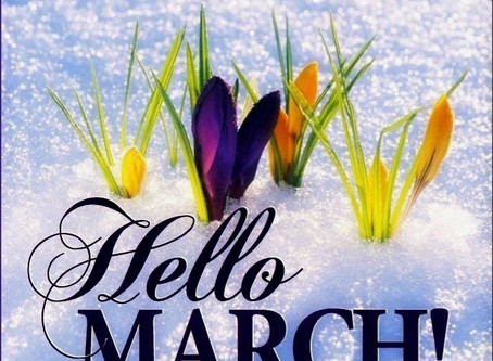 March News and Happenings at Tribe