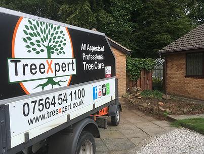 TreeXpert tree care Chorley