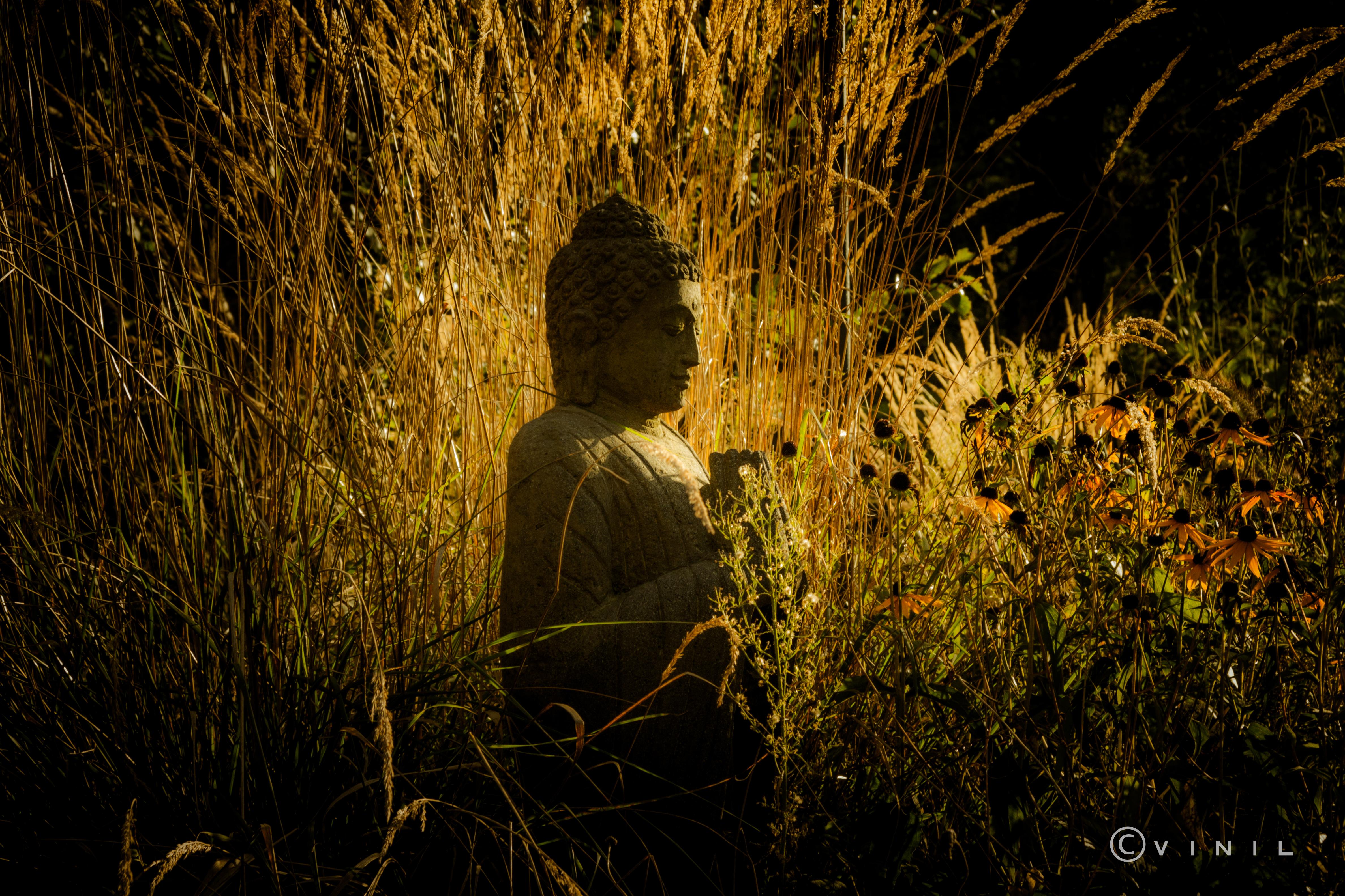 Villa Nao Bouddha