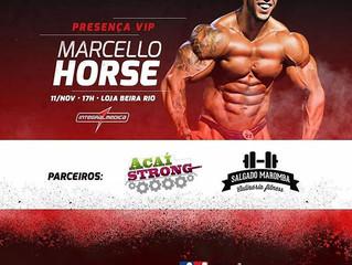 MARCELO HORSE